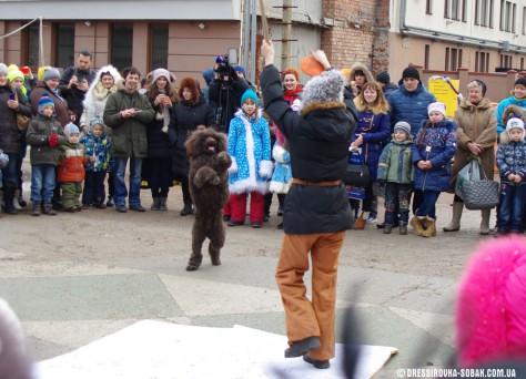 Участие дрессированных собак в детских праздниках