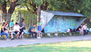 дрессировочный лагерь с Мельничук Еленой, семинар по трюковой дрессировке Лармон, семинар по Танцам с собаками с Еленой Гончар